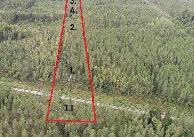 Metsäpalsta Kaustinen 2,9 ha